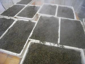 蒸気を使って効率よく発酵