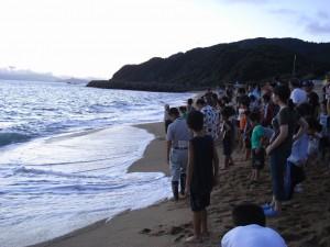 海亀の放流